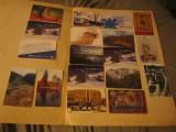 Cartele lot cartele 3