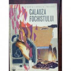 CALAUZA FOCHISTULUI - M. ALDEA