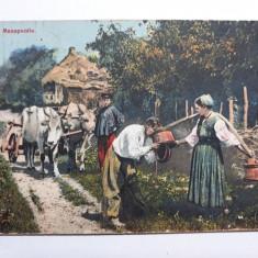 RUSIA IMPERIALA 1911 - PERSONAJE DE EPOCA - PEISAJ RURAL - ANIMATIE - CAR CU BOI