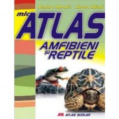 Mic atlas - Amfibieni si reptile - Aurora Mihail, Dumitru Murariu