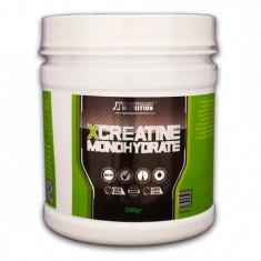 X Creatine Monohydrate, 300 g