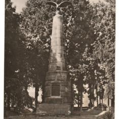 CPIB 15434 ALBESTI. MONUMENTUL LUI PETOFI