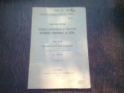 CONTRIBUTIUNI LA STUDIUL PATOGENIEI SI TERAPIEI ECLAMPSIEI LA CATEA - AL. VECHIU (TEZA DE DOCTORAT) foto