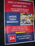 Afis electoral despre referendum 2018
