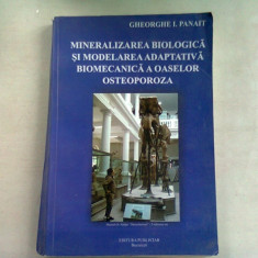 MINERALIZAREA BIOLOGICA SI MODELAREA ADAPTATIVA BIOMECANICA A OASELOR. OSTEOPOROZA - GHEORGHE I. PANAIT