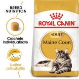 Royal Canin Maine Coon Adult, pachet economic hrană uscată pisici, 10kg x 2