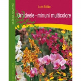 Orhideele - minuni multicolore - Lutz R?llke