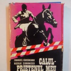 CALUL PRIETENUL MEU de EMANUEL FANTANEANU SI SICOLAE SERBANESCU , 1982