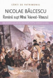 Romanii supt Mihai Voievod-Viteazul/Nicolae Balcescu, Minerva