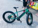 Bicicleta electrica Pegas Suprem Dinamic Verde Smarald, 18, 7, 26