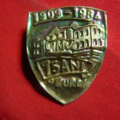 Insigna - 75 Ani Liceul Mihai Viteazul Turda 1909-1984 ,alama ,h= 3,7cm
