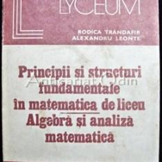 Principii Si Structuri Fundamentale In Matematica De Liceu - Rodica Trandafir