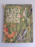 A doua carte a Ralucai- Victor Tulbure -Ilustratii de Angi Petrescu - Tiparescu