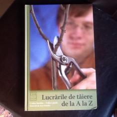 Lucrarile de taiere de la A la Z - Czaka Sarolta, Vallo Laszlo