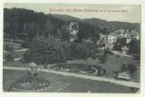 cp Govora : Aleea si Parcul Bailor - UPU, circulata 1916