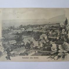 Rara! Orlat/Sibiu,carte postala necirculata anii 20, Fotografie