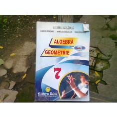 ALGEBRA. GEOMETRIE. CLASA A 7-A - ARTUR BALAUCA