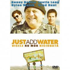 Visele nu mor niciodata (Just Add Water) DVD