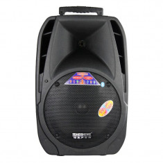 Boxa audio portabila Temeisheng A29, USB, card SD