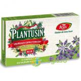 Plantusin Usureaza Expectoratia 15cps