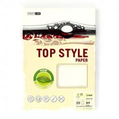 Carton pentru carti de vizita A4 ivory Topstyle 20 coli/set