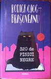 320 de pisici negre, Rodica Ojog-Brasoveanu