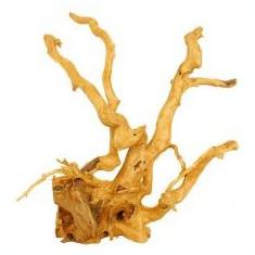 Cuckoo Root rădăcină pentru acvariu - 35 x 22 x 40 cm