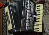 Vand acordeon Parrot cu 48 basi