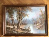 "Tablou,pictura in ulei pe panza""Peisaj in delta"",rama de lemn, Natura, Altul"