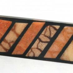 Broșă de epocă lucit si cu coral natural
