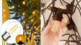 Ghirlanda luminoasa 10 m lungime, cu becuri led dimabile Edison sticla cu filament 4 w/bec, 1 dulie E27/ml, lumina calda, interconectabila