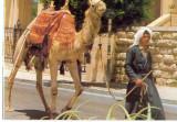 AD 1112 C. P. VECHE -IERUSALEM,  OLD CITY STREET SCENE -IERUSALIM -ISRAEL, Necirculata, Printata