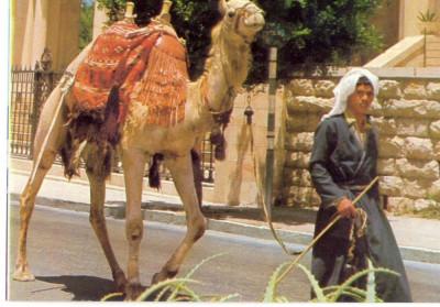 AD 1112 C. P. VECHE -IERUSALEM,  OLD CITY STREET SCENE -IERUSALIM -ISRAEL foto