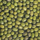 Fasole mung seminte pentru germinat 200g