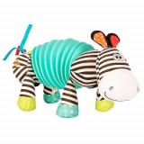 Zebra Acordeon