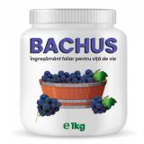 Ingrasamant pentru vita de vie Bachus 1 kg