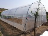 Solar profesional din teava zincata TZ 4/24m