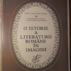O ISTORIE A LITERATURII ROMANE IN IMAGINI (MAPA CU PLANSE) - COLECTIV