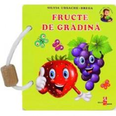 Fructe de gradina - Silvia Ursache-Brega