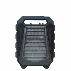 Boxa portabila wireless, functie karaoke + microfon cadou