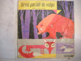 Ursul pacalit de vulpe-vinil mic