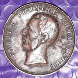 1866 - Carol I Domnulu Romanoluru