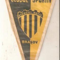 Fanion F.C.Steagul Rosu Brasov
