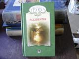 ACCIDENTUL - NICHOLAS SPARKS, Rao