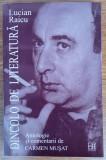 Dincolo de literatură, Lucian Raicu