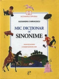 Mic Dictionar de Sinonime/***