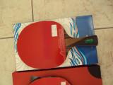 Paleta tenis de masa Meteor