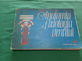 ANATOMIA ȘI FIZIOLOGIA OMULUI * ÎNDRUMĂTOR PENTRU ELEVI / R. CÂRMACIU/ 1994