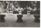 carte postala-Constantin Brancusi-Aleea scaunelor