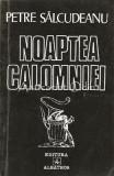 Cumpara ieftin Noaptea Calomniei - Petre Salcudeanu